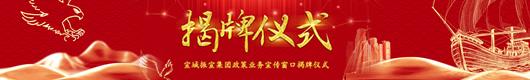 """宣城振宣集团举行""""政策业务宣传窗口""""揭牌仪式!"""