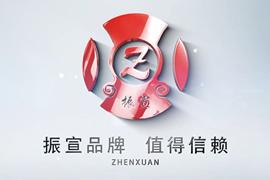 振宣集团宣传片